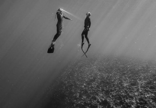 X-men Freediver