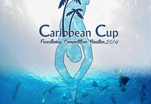 Caribbean Cup 2014 – AIDA