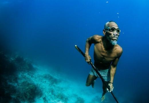 SCIENCES – Première preuve d'une adaptation génétique liée à la pratique de la plongée en apnée
