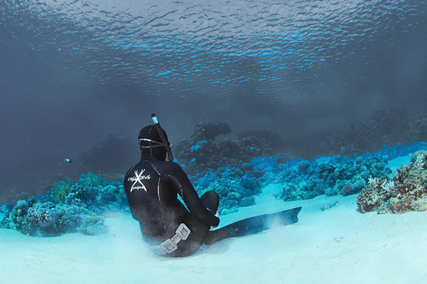 photo : freedive international