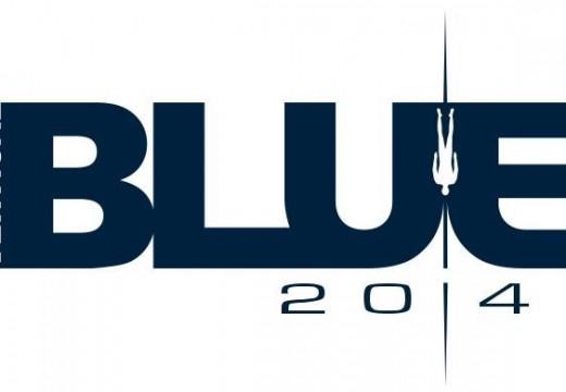 VERTICAL BLUE 2014 (AIDA international)