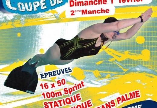 2e manche de la Coupe de France FFESSM 2015 – Angoulême